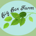 Big Box Farm