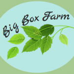 Millennium Fellows Launch Big Box Farm Initiative