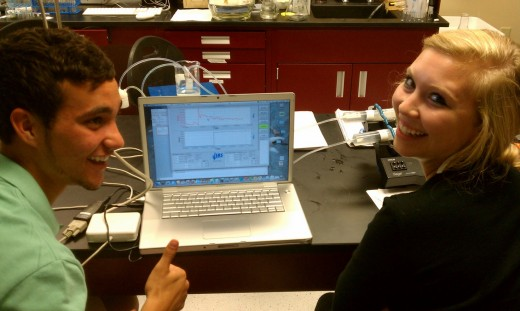 Students working on a research project in the lab.
