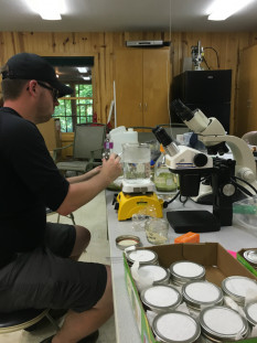 Anthropology major BJ Schutte does lab work at the college's Ecological Station.