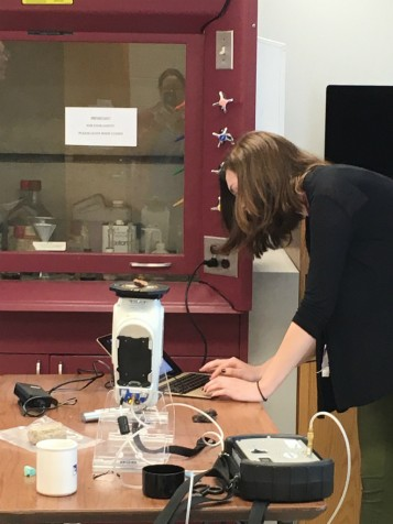 Students learn to use portable X-Ray Fluorescence technology to chemically source artifacts.